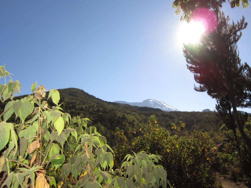 Private tour Mount Kilimanjaro