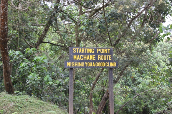 A Photographic Journey Mount Kilimanjaro – Day 1 Machame Camp