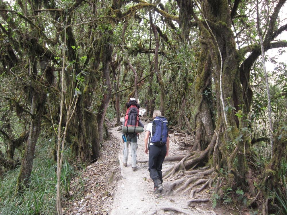 Climbing Kilimanjaro – Hand Luggage Essentials