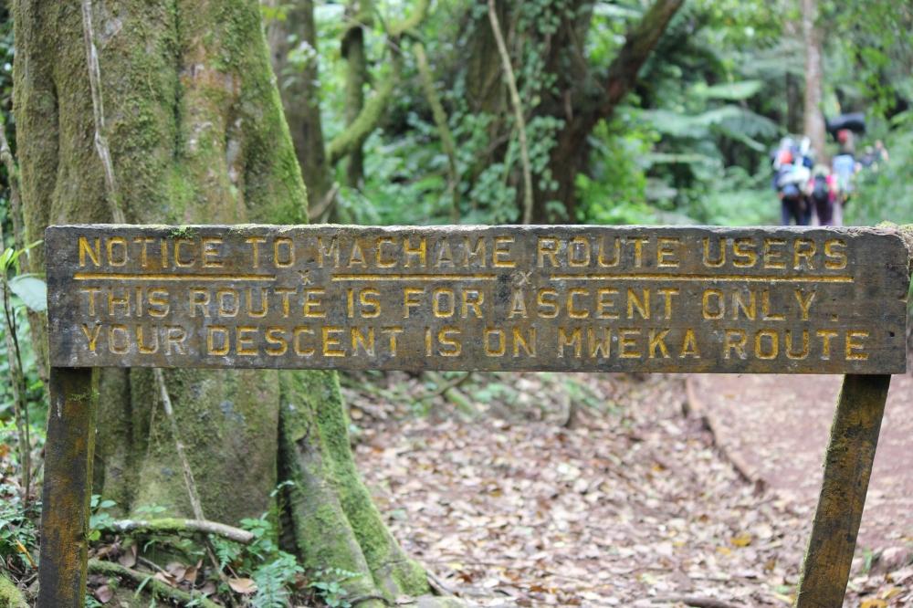 climb kilimanjaro machame route