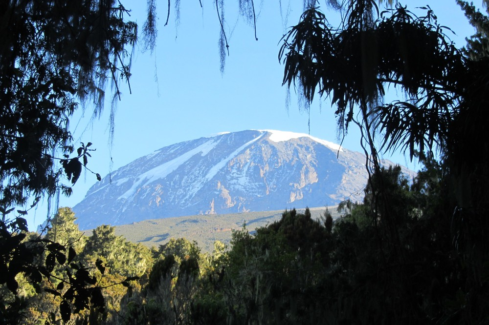 book group tour kilimanjaro