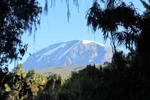 book group tour kilimanjaro