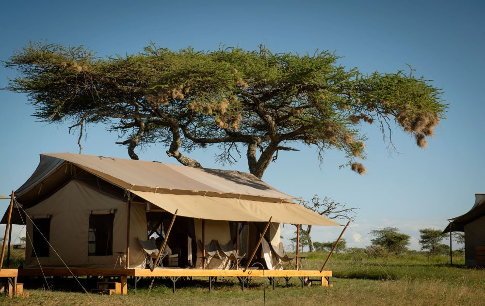 Luxury Kilimanjaro Serengeti Zanzibar